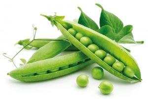 verdure facili da coltivare
