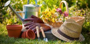 giardino da curare