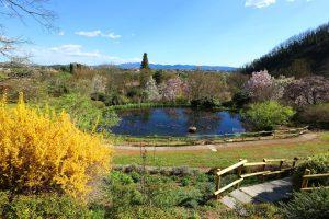 Parco viatori giardino