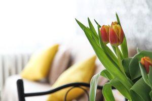 tulipani appartamento