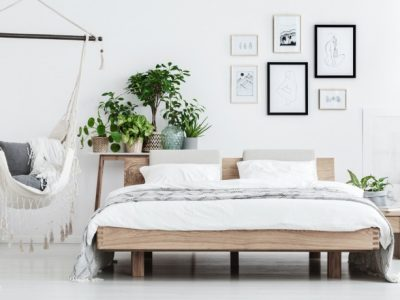 migliori piante per la camera da letto