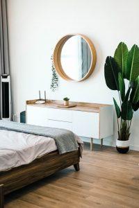 piante in camera da letto